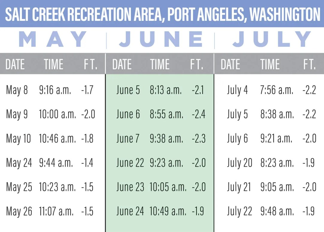 Salt Creek Recreation Area tide pool 2020 dates and times for minus tide charts, Port Angeles, Washington