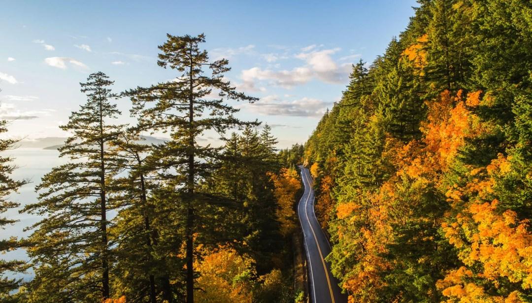 Fall colors on the Chuckanut Drive