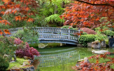 Best Places to See Fall Foliage in Washington