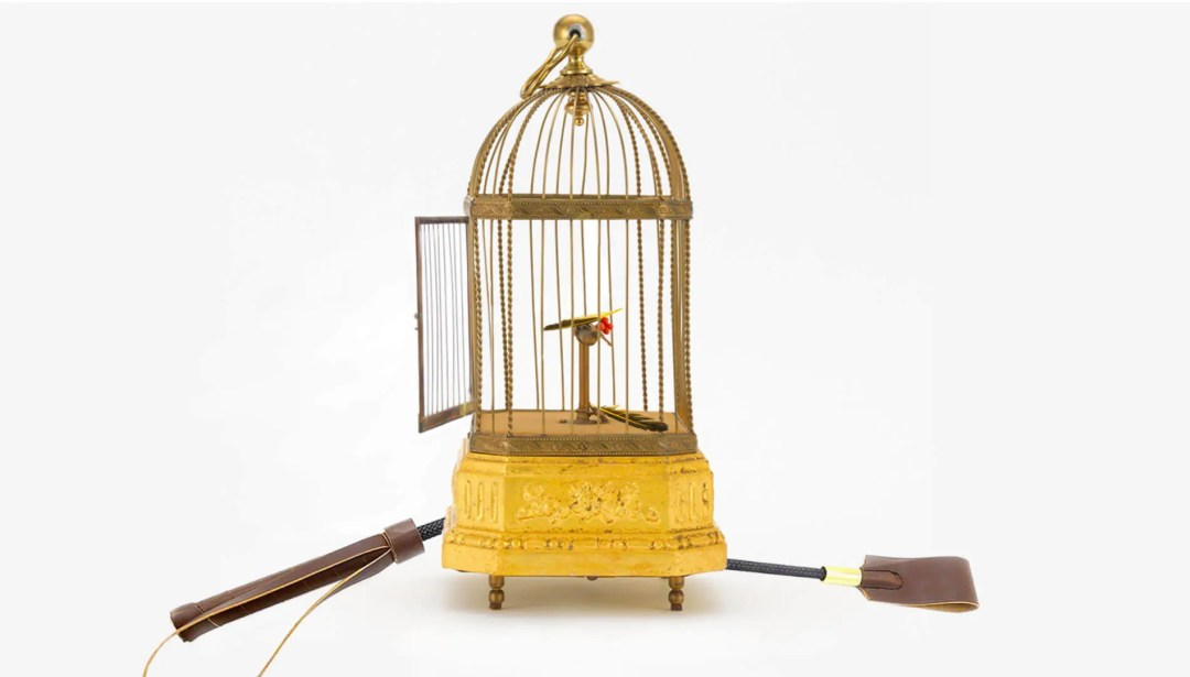 Cage with a bird