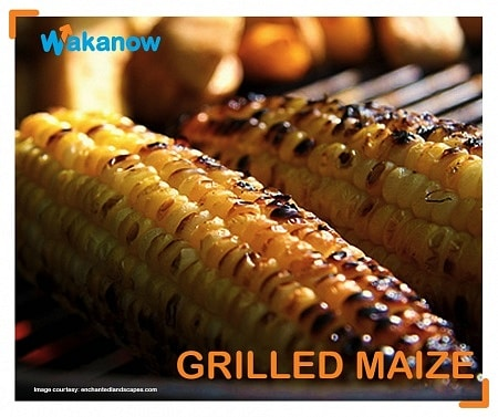 grilled maize food