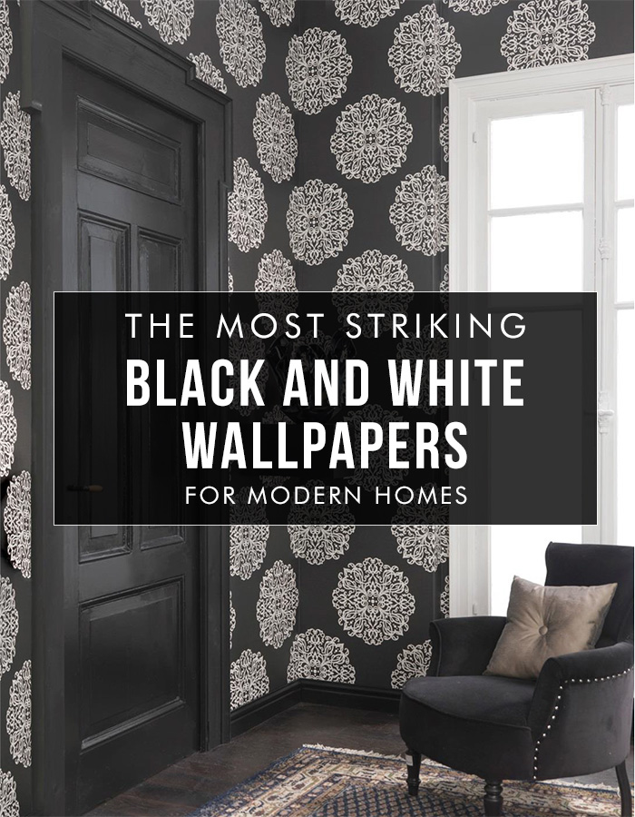 be bold with wallpaper - photo #13