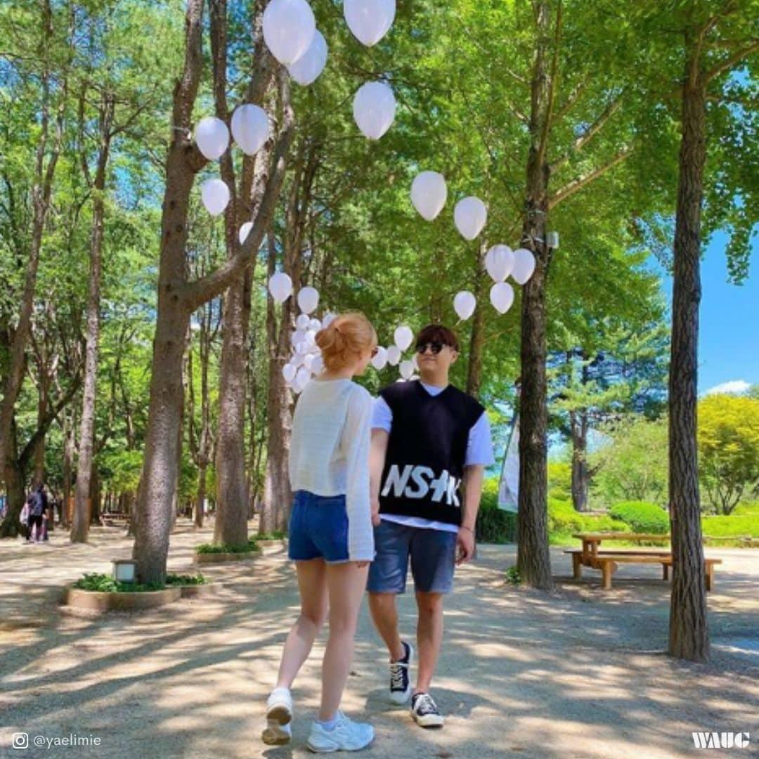 nami-island-tours-from-seoul