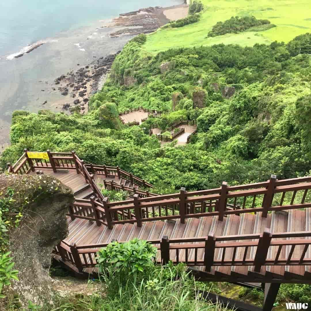 what-to-do-in-jeju-tour