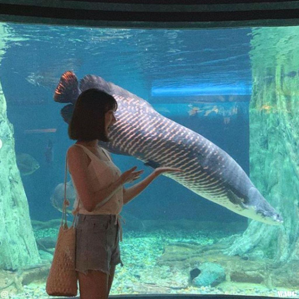 aquaria-klcc-ticket-price-discount
