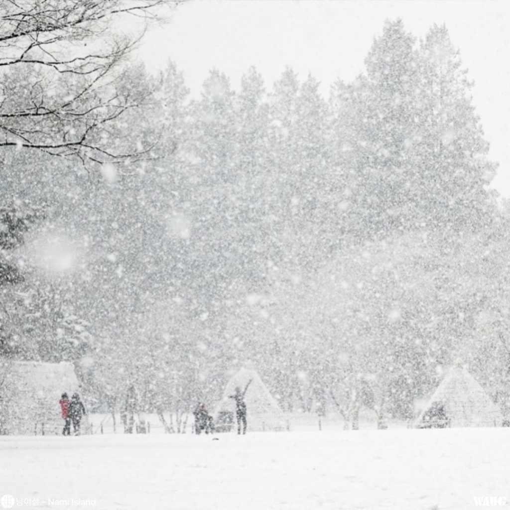 nami-island-winter