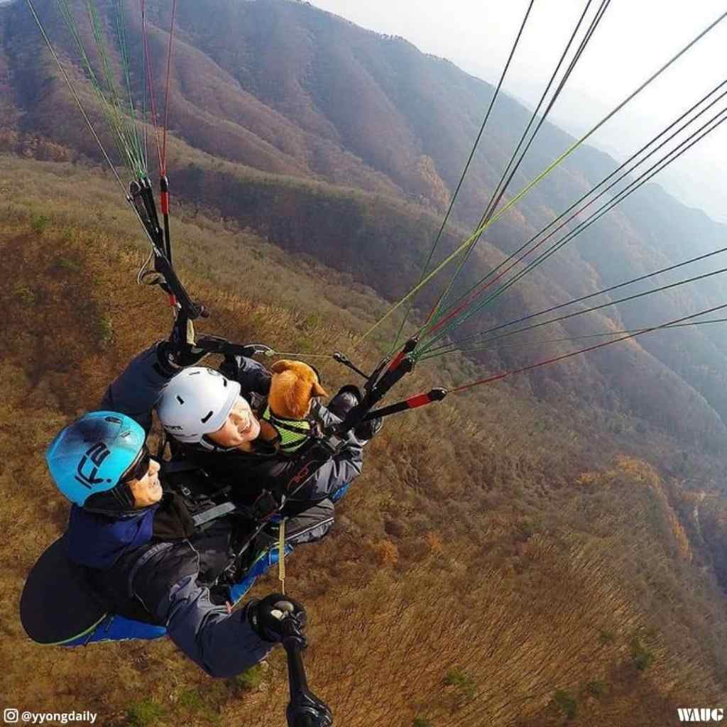 seoul-to-yangpyeong-paragliding-park