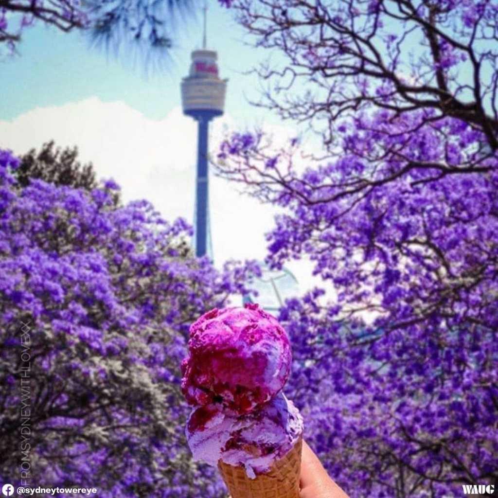 Sydney tower eye tickets