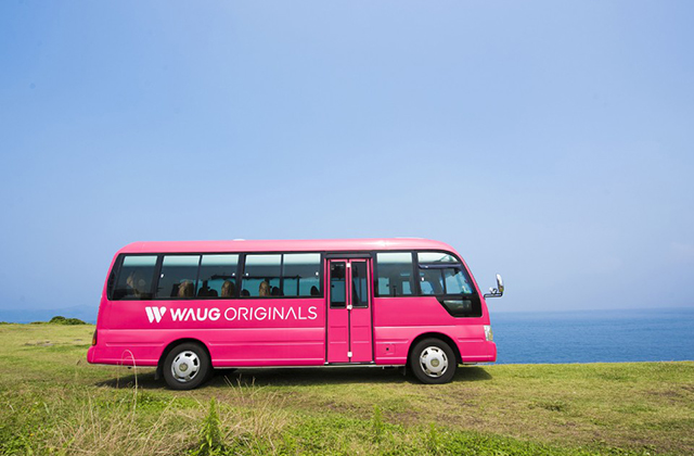 jeju-1-day-tour-package