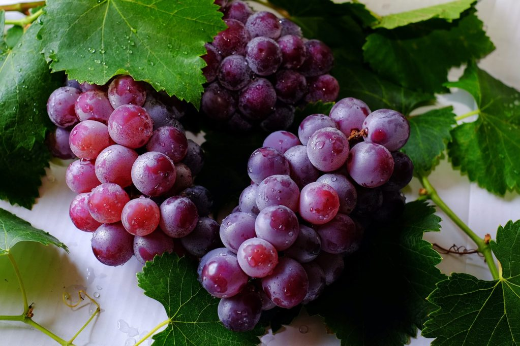 How many grapes should you eat a day to lose weight