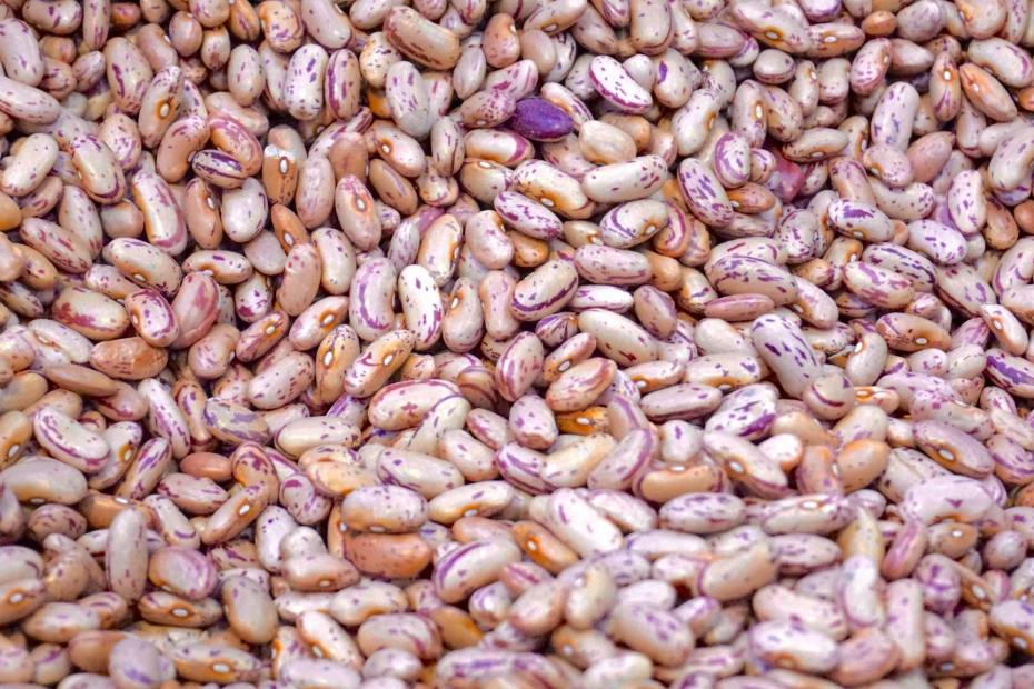 Are Pinto Beans Good For Weight Loss