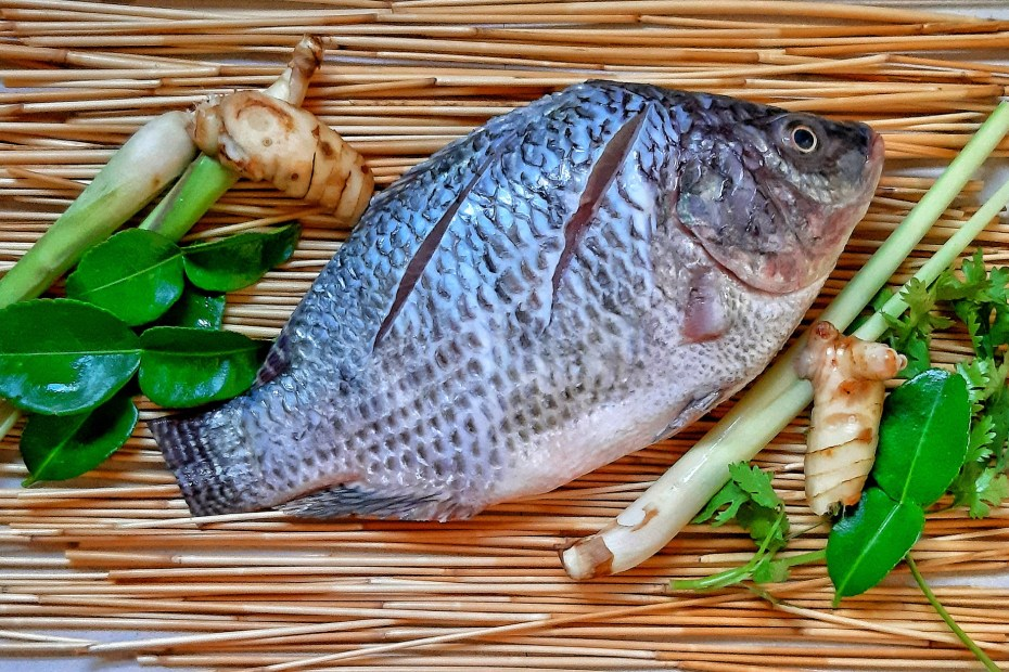 Is Tilapia Good For Weight Loss
