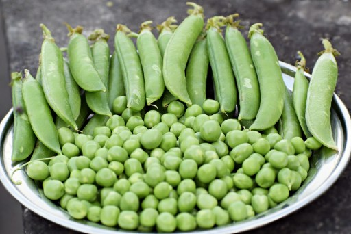 Plate of green peas