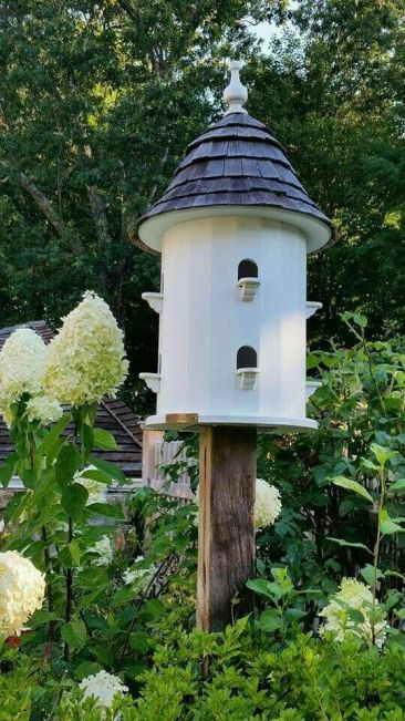 Our Favorite Birdhouses & Bird Feeders