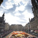 Brussels highlights sun-splashed summer with flower carpet