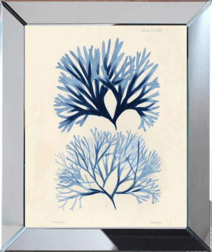 navy_coral_framed_wall_art