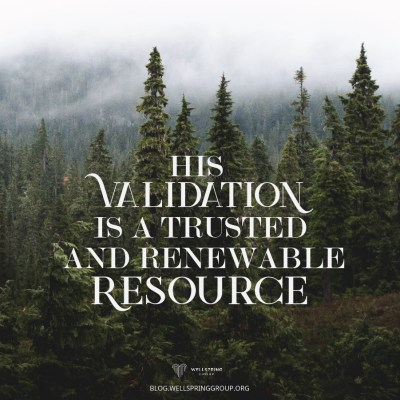 His Validation | Wellspring Group Blog