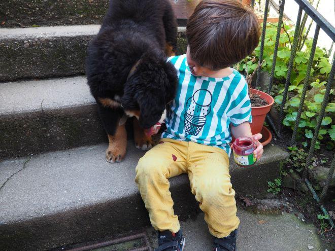 chien et petit garcon-4230772