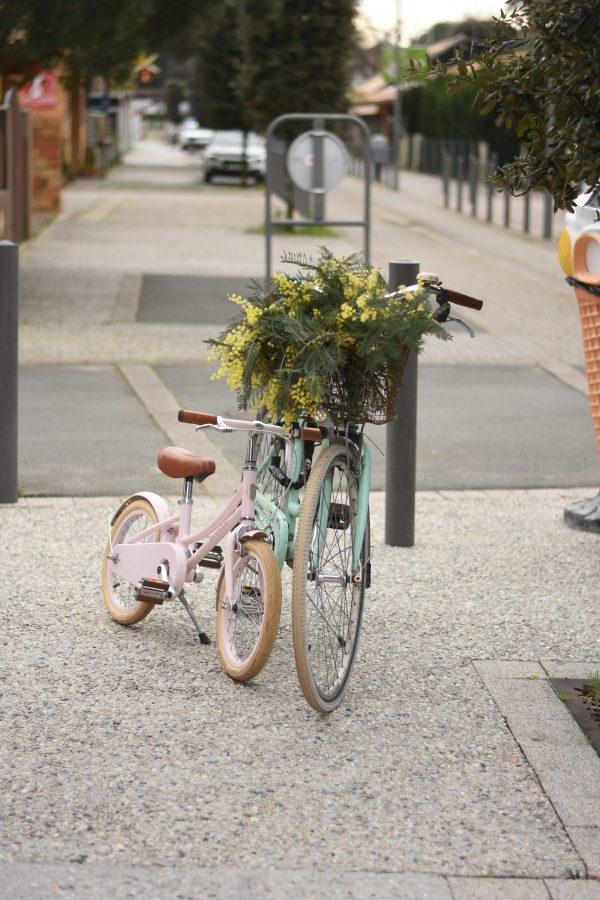 Nos balades en vélo