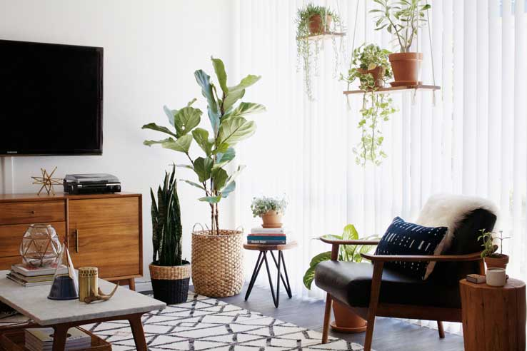 Before + After: New Darlings' Desert Inspired Home