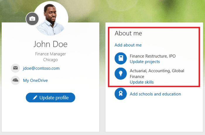 O365 SharePoint Delve Another FInal Profile