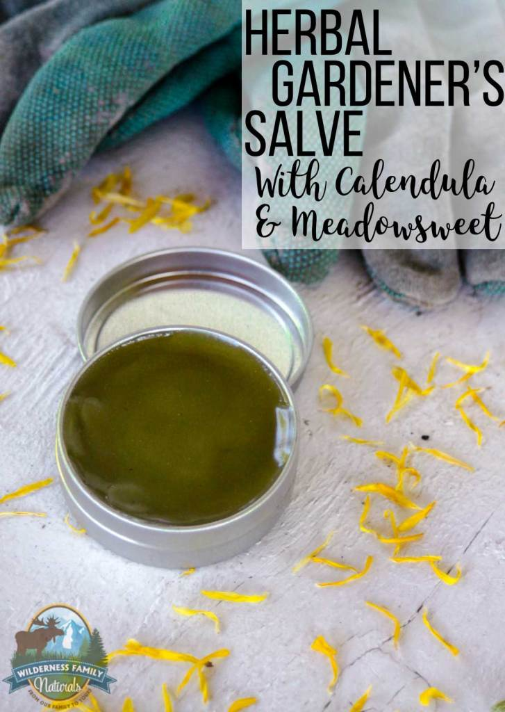 Herbal Gardener's Salve With Calendula & Meadowsweet | Nourish the skin with this herbal gardener's salve for hardworking hands. With healing herbs like Wilderness Family Naturals Calendula and Meadowsweet, this herbal salve whips up in a hurry to repair, soothe, and smooth the skin. | WildernessFamilyNaturals.com