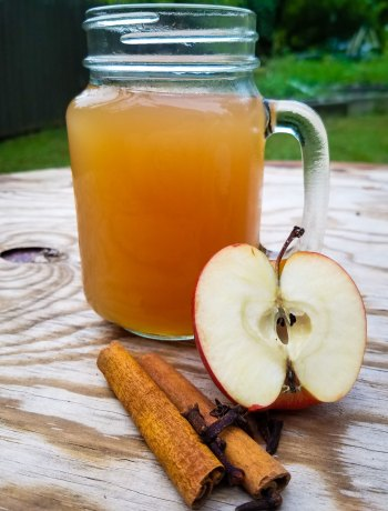 High Fiber Apple Cider   The combination of agave inulin and coconut syrup makes a rich, delicious cider that is also high in fiber. Here is one of my favorite childhood memories -- hot apple cider with a caramel-y, fiber-rich boost.   WildernessFamilyNaturals.com