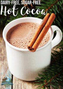 Dairy-Free, Sugar-Free Hot Cocoa