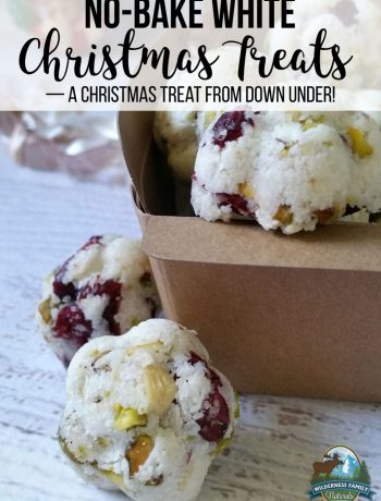 A photo of white christmas treats with pistachios, cashews and cranberries in a bowl.