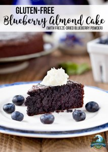 Gluten-Free Blueberry Almond Cake {with freeze-dried blueberry powder}