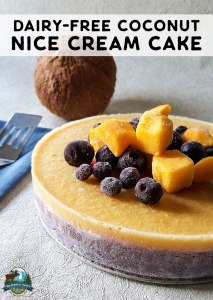 Dairy-Free Fruity Coconut Nice Cream Cake