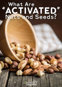 """What Are """"Activated"""" Nuts & Seeds?"""