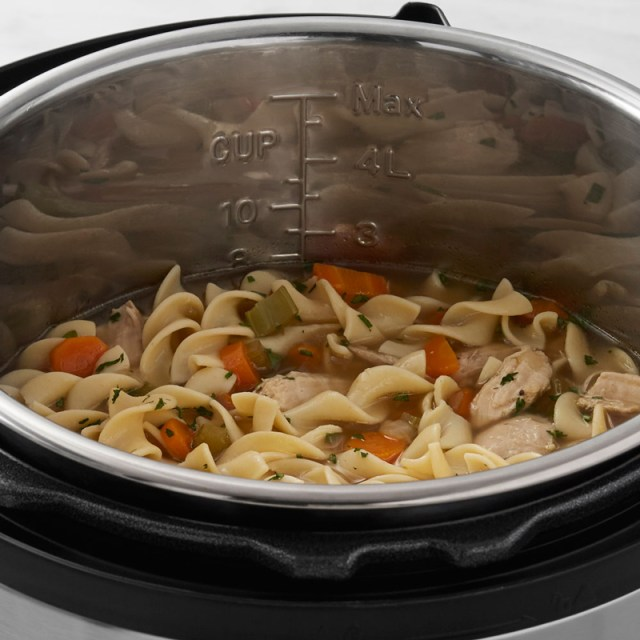 Instant Pot Chicken Noodle Soup