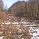 Blick frei bis zum Prellbock. 225 Meter Gleis wurden freigelegt.
