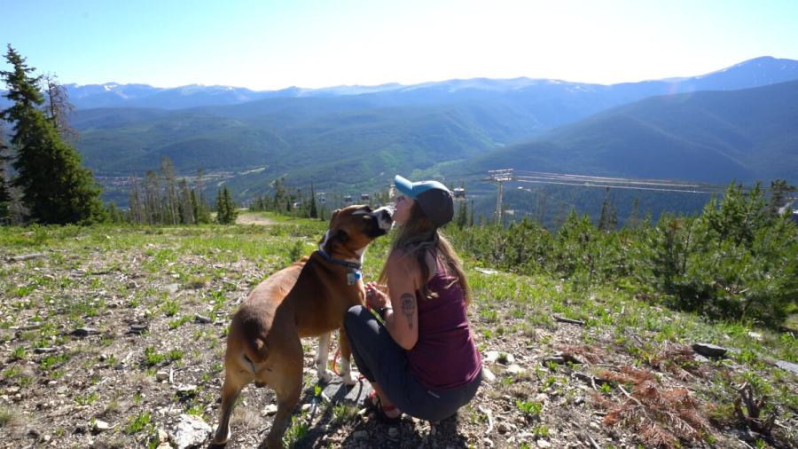 Hikes on Sunnyside are a great option for exploring the mountain and finding dog-friendly trails.