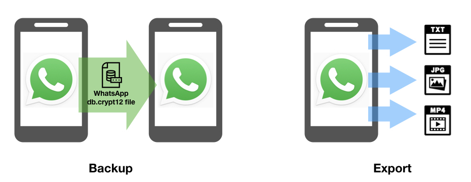 How to Back Up WhatsApp - WITNESS Blog