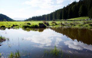 Rundwanderung Knottnkino Meraner Land
