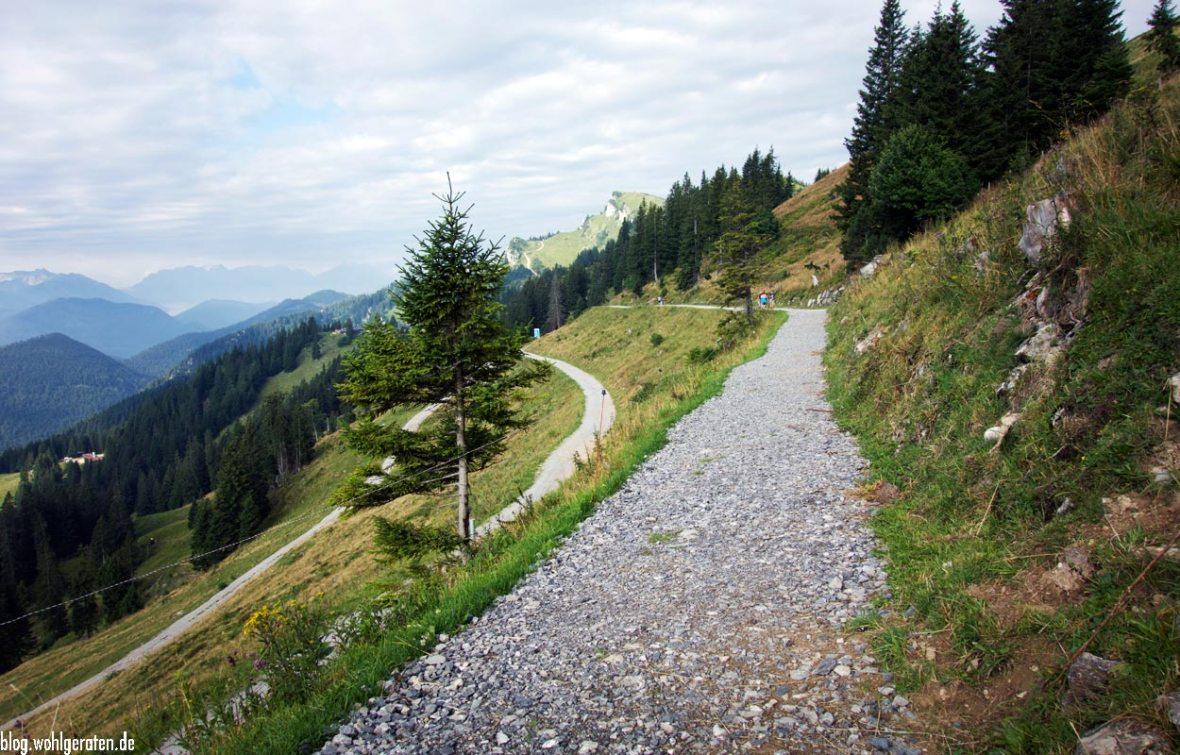 Forstweg zur Stie-Alm