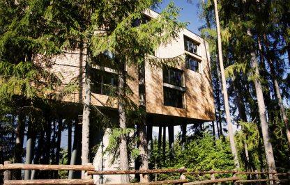 Baumhaushotel My Arbor – Brixen