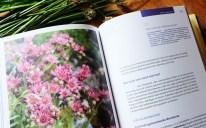 Alpenmedizin - Edition Raetia