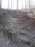 Bergwaldbühne 4