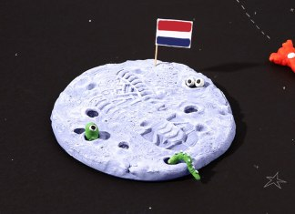 Blog_HeaderImage copy_NL