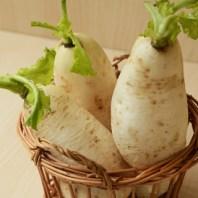 蘿蔔,白玉蘿蔔