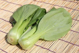 青江菜,湯匙菜