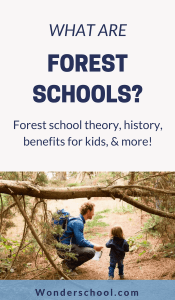 If you've been wondering what forest schools are, this comprehensive post will answer all your questions! Learn how forest schools are benefitting young children through holistic, emergent learning.
