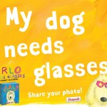 Pinterest Photo Contest: My Dog Needs Glasses!