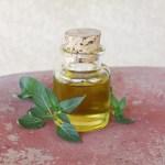 Lavender-Vetiver Massage Oil