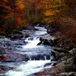 5 Fall Getaways