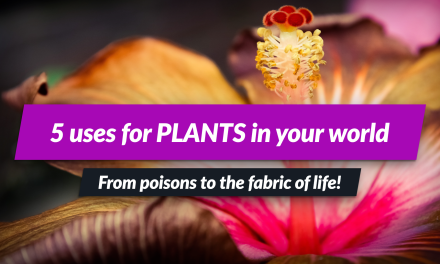 Fantasy plants? 5+ AWESOME uses for them in your campaign setting or novel!