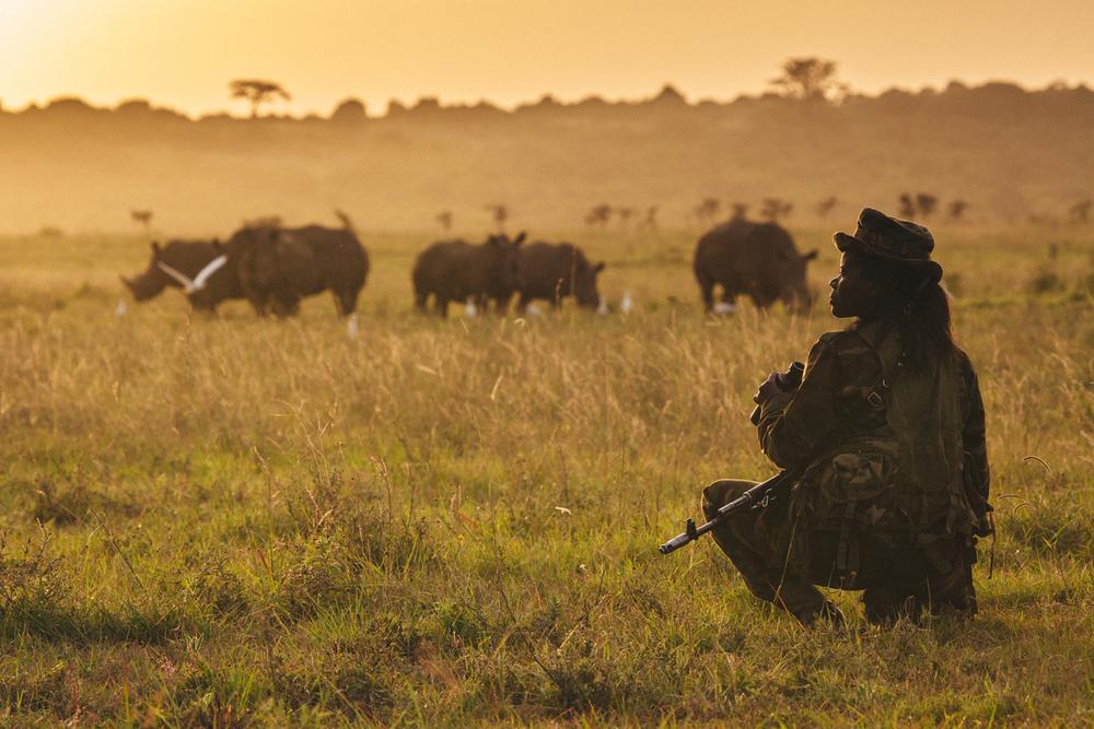 wildlife conservation rangers
